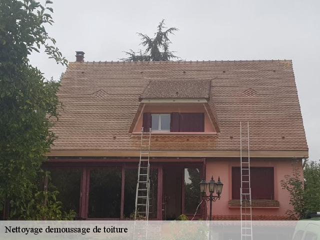 Nettoyage et démoussage de toiture à La Remuee tel: 02.57.05.03.61
